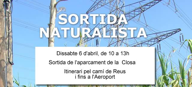 cartell de la sortida naturalista